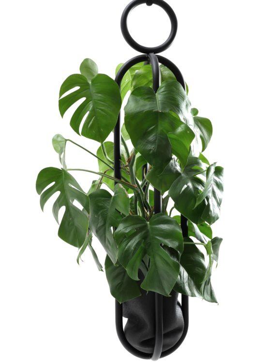 ATELIERHAUSSMANN_BLUMENAMPEL_EDITION_VASE_BIRGITSEVERIN_Zascho Petkow-design Berlin-Dekoration Pflanze-Pflanzen Obekt