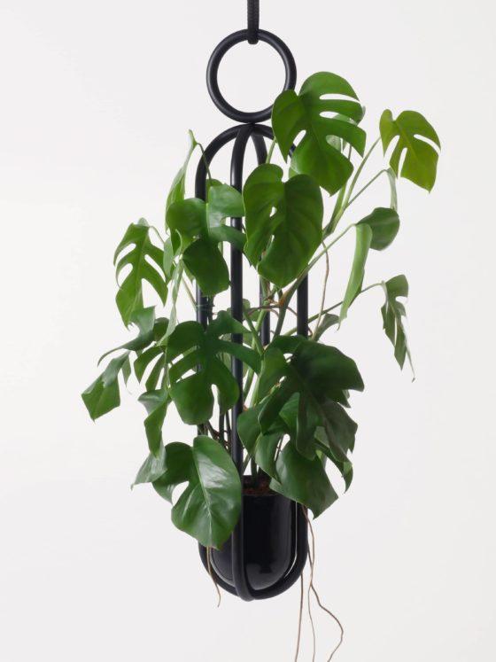 Blumenampel von Zascho Petkow für Atelier Haussmann ist ein hängendes Objekt für Blumen und Pflanzen.