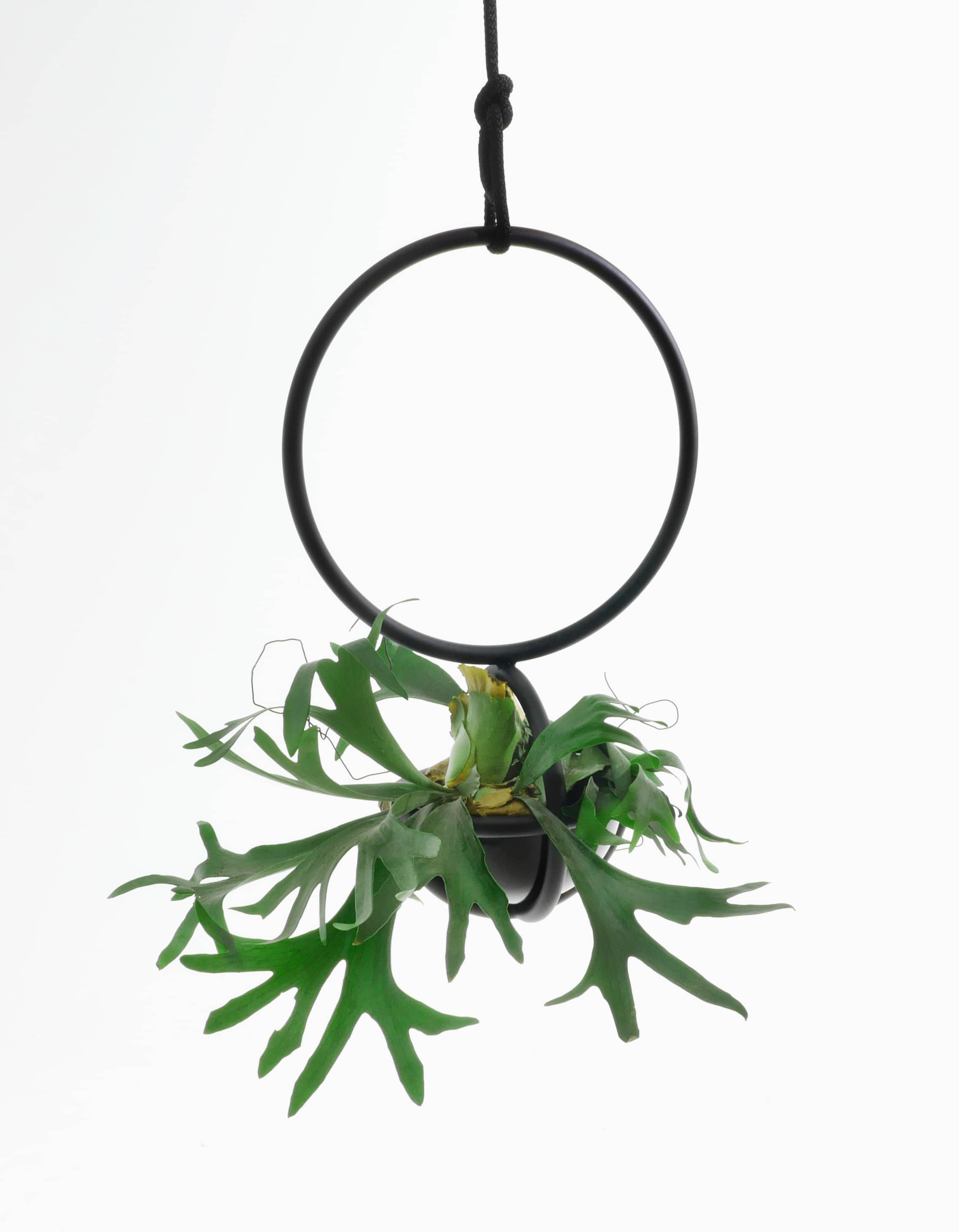Blumenkugel design by Zascho Petkow and Andreas Haussmann, hanging basket room object