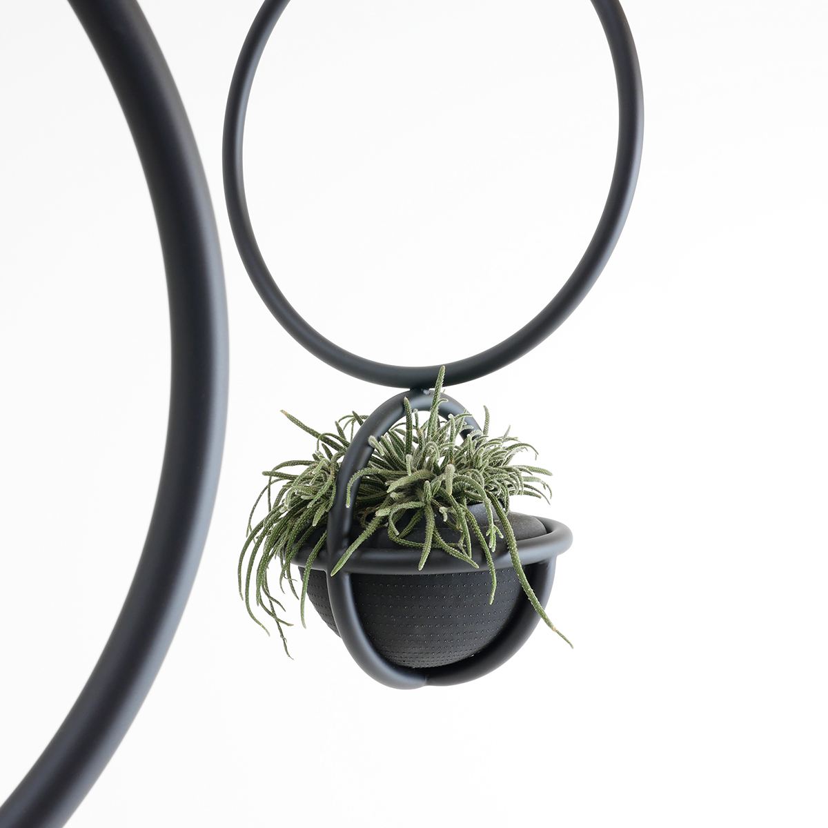 Blumenkugel, hangingplants object from Zascho Petkow and Andreas Haussmann, vase from Birgit Severin