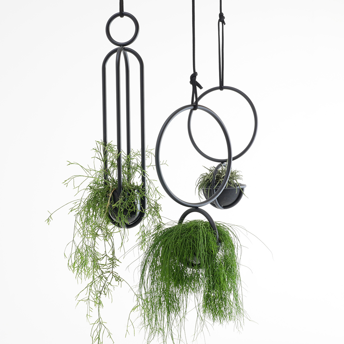 Blumenkugel and Blumenampel, hangingplants object from Zascho Petkow and Andreas Haussmann, vase from Birgit Severin