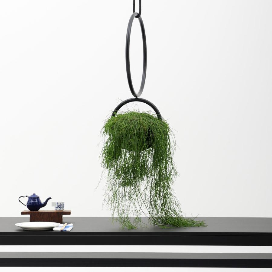Wie eine Blumenampel, hängendes Raumobjekt für Pflanzen aus Rundrohr, schwarzmatt, über schwarzen Tisch