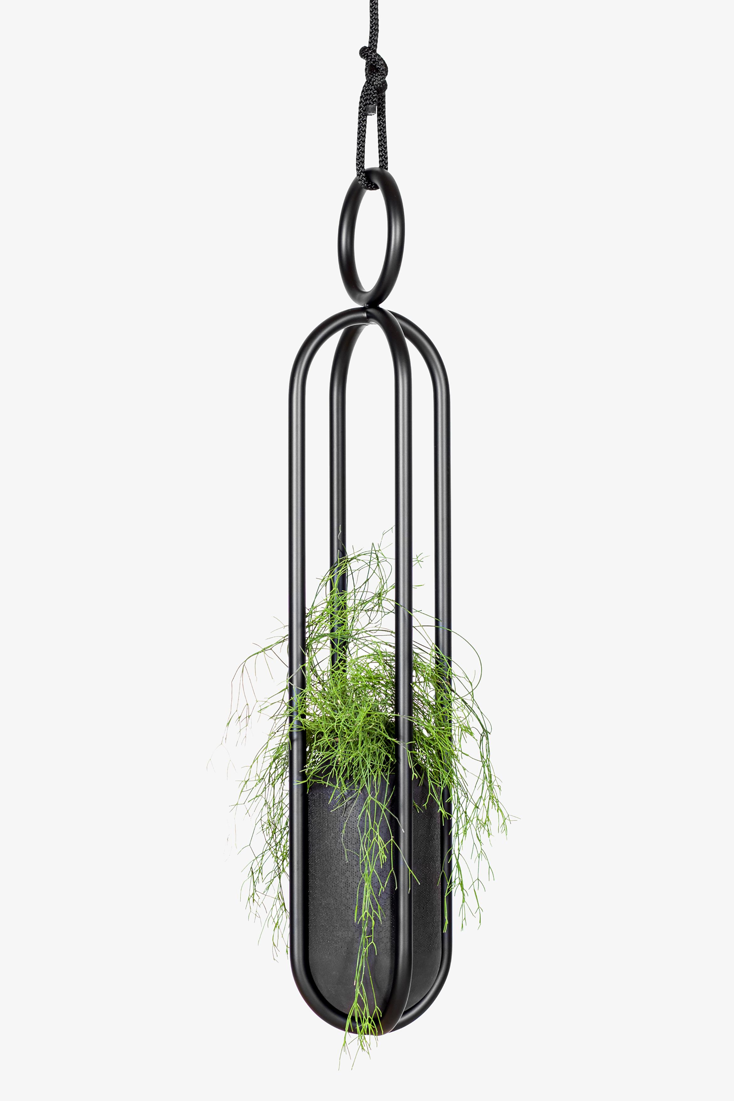 Blumenampel Stahl schwarz Pflanze Atelier Haußmann